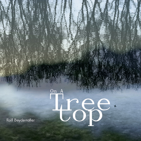 Cover_On A Treetop_rgb_96dpi